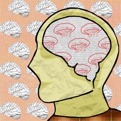 Медуза для мозга